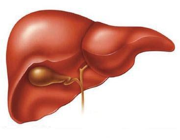 结节型肝癌早期有什么症状